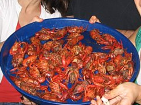 Crawfish 2009