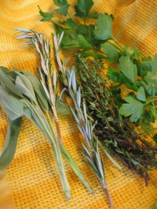 Fresh Herbs - Sage, Rosemary, Thyme, and Parsley