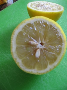 Halved Lemon