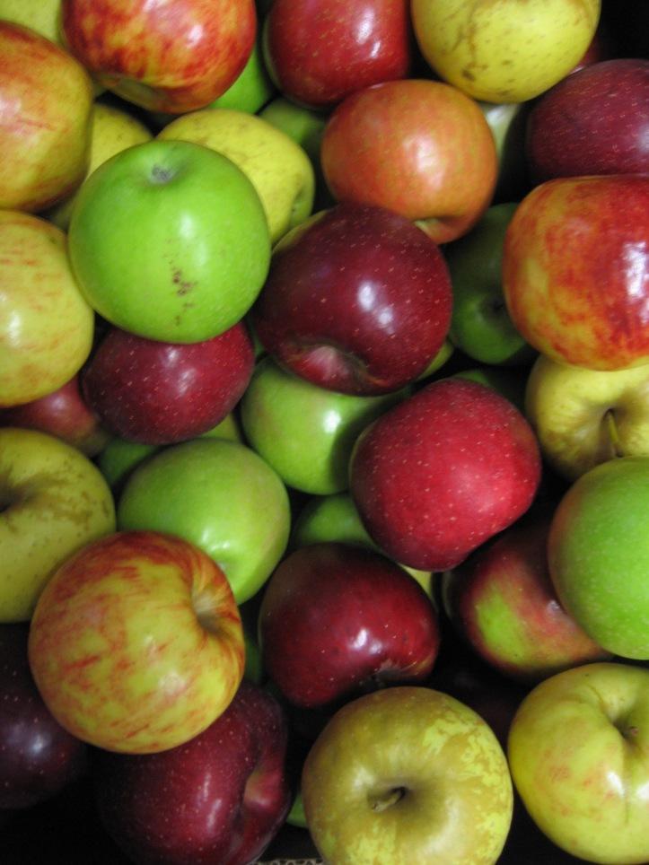 My bushel of apples
