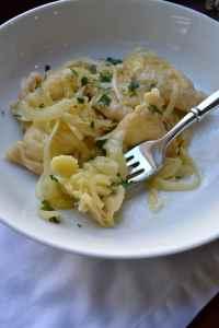 Bite of Pierogi