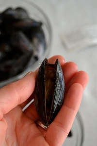 Mussel that won't close when tapped