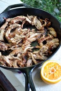Browned Turkey Meat