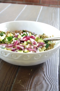 Farro, Basil-Parmesan Dressing, Zucchini and Red Onion