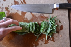 Cutting Collard Greens 5