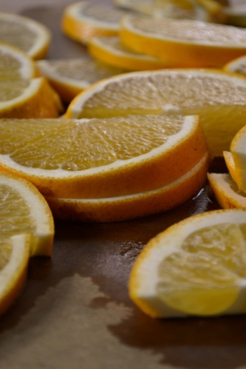 Orange Slices 2