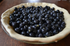 Blueberries in the Crust