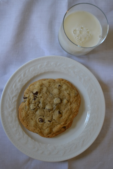 Cookie with Milk from Above