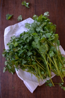 Flat Leaf Parsley and Cilantro