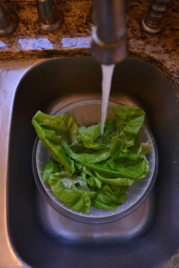 Washing the Lettuce