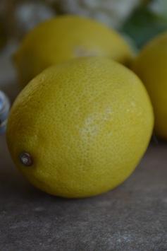 Lemon (www.mincedblog.com)